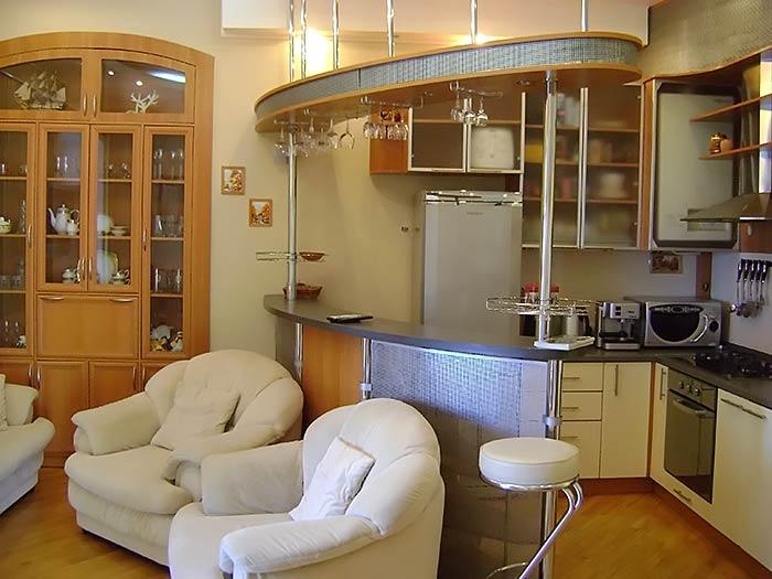 Кухня студия с барной стойкой фото