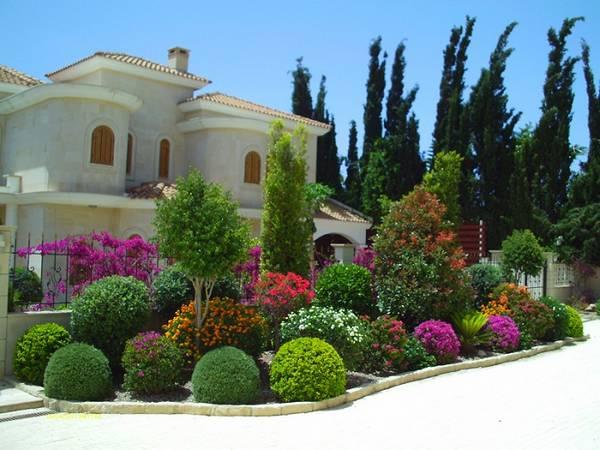 Ландшафтный дизайн двора частного дома, фото 16