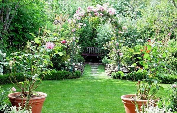 Ландшафтный дизайн двора частного дома, фото 9