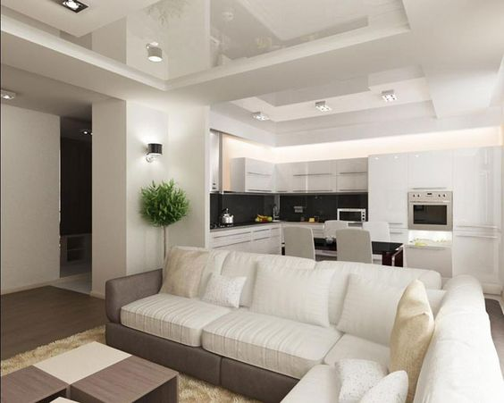 кухня гостиная с зонированием, фото 29