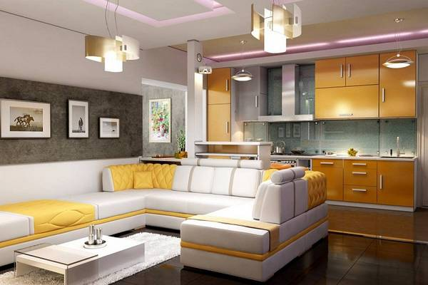 кухня-гостиная, фото 1
