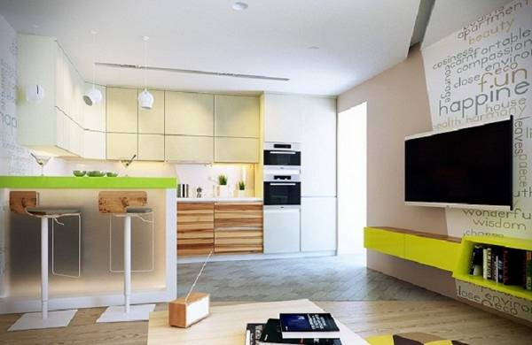 кухня-гостиная, фото 4