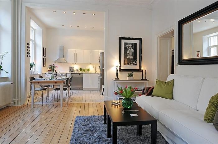 стили в интерьере однокомнатной квартиры фото, фото 4