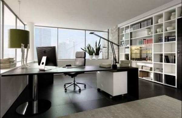 дизайн комнаты кабинета в квартире, фото 25