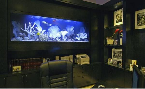 дизайн современного кабинета квартиры, фото 39