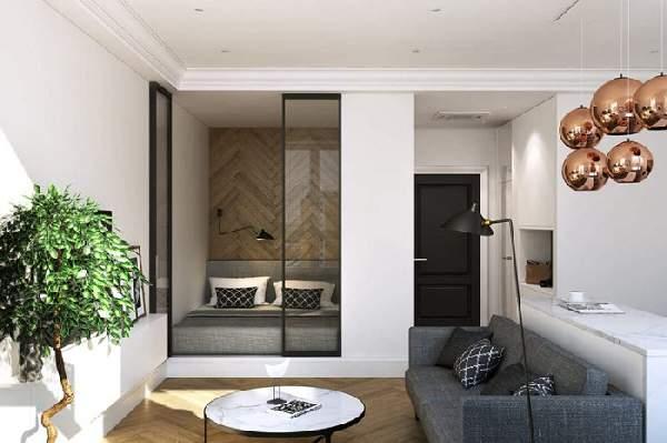 зонирование однокомнатной квартиры фото 18 кв м, фото 9