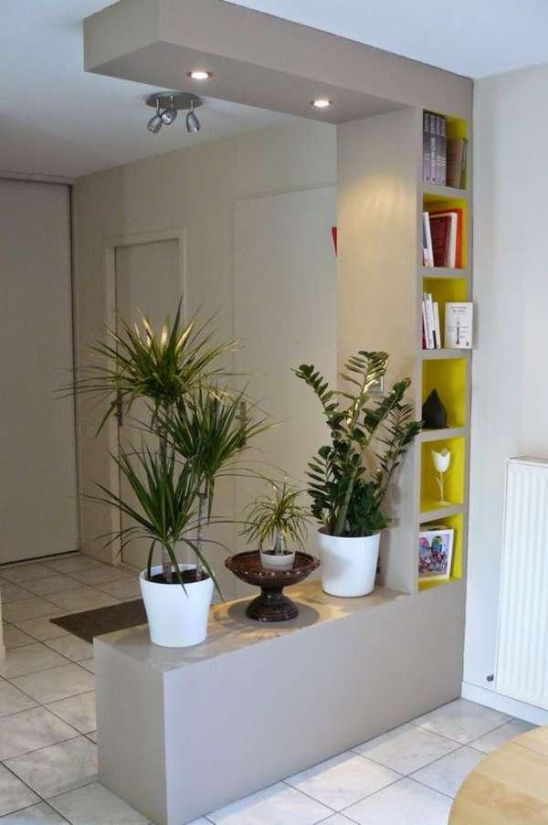 оригинальные комнатные растения в интерьере прихожей, фото 13