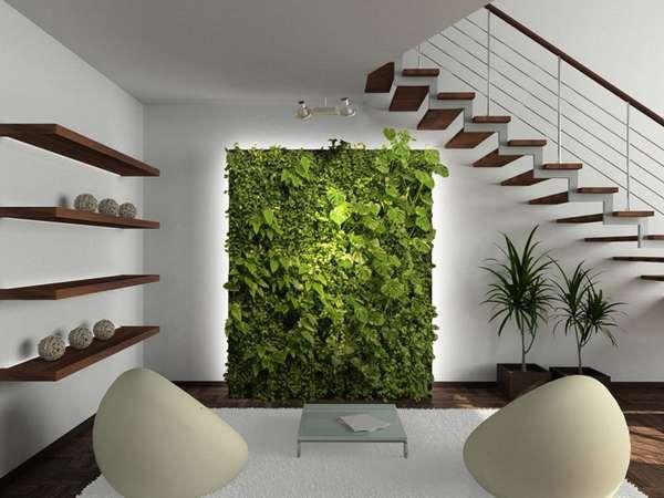 растения в интерьере, фото 5