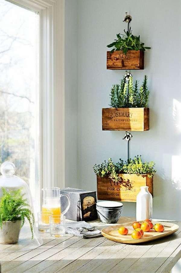 растения в интерьере кухни, фото 31
