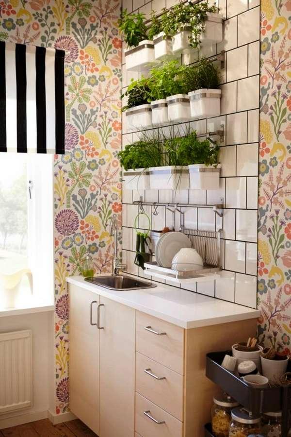 растения в интерьере кухни, фото 33