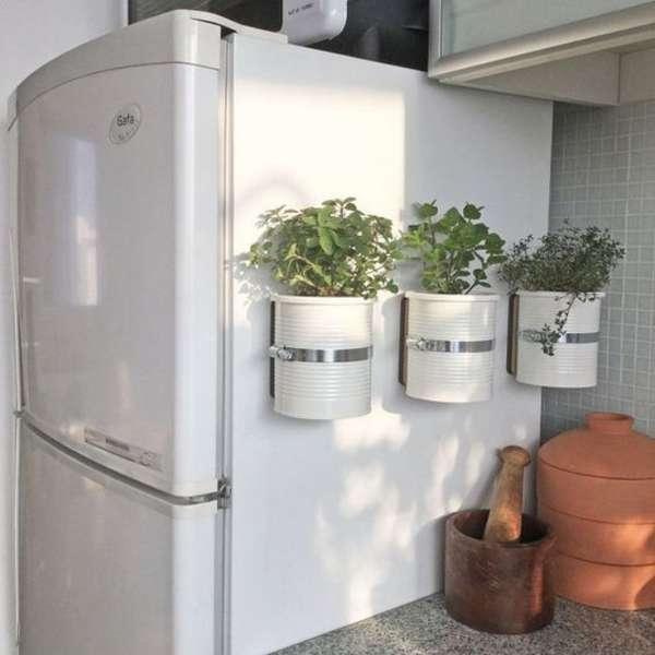 растения в интерьере кухни, фото 35
