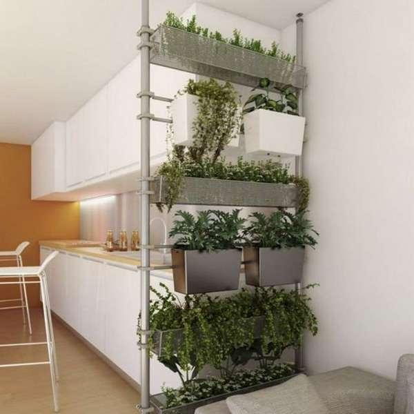 растения в интерьере кухни, фото 36