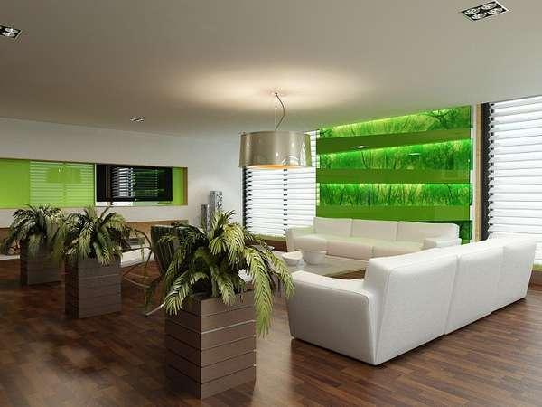комнатные растения в интерьере квартиры, фото 3