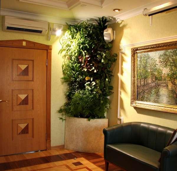 оригинальные комнатные растения в интерьере прихожей, фото 11