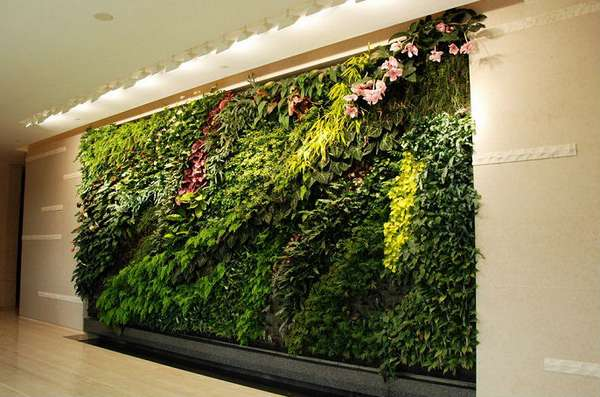 комнатные растения в интерьере фитостена, фото 12