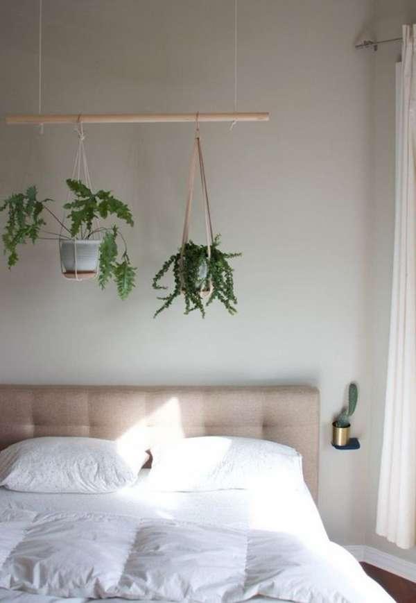 растения в интерьере спальни, фото 27
