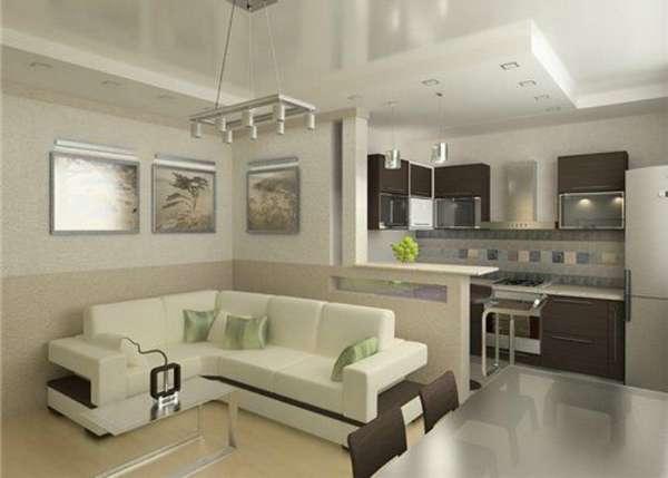 дизайн кухни гостиной, фото 11