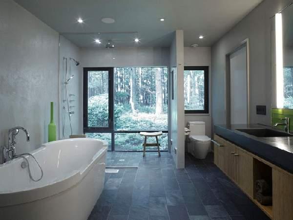 дизайн большой ванной комнаты в частном доме, фото 11
