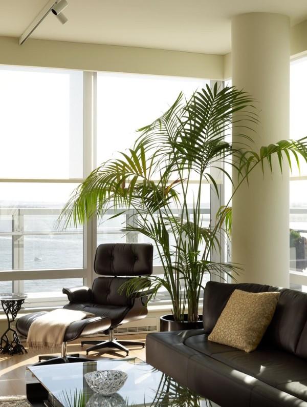 большая пальма в оформлении интерьера гостиной