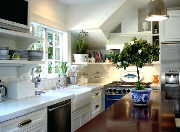 оформление интерьера кухни комнатными растениями