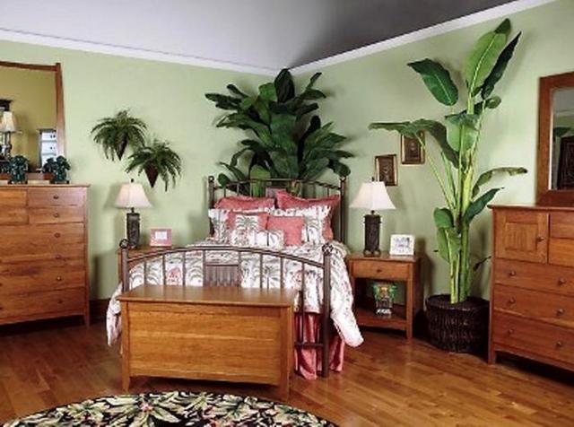 озеленение комнаты