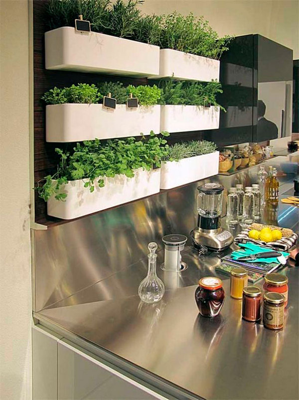 трава на кухне