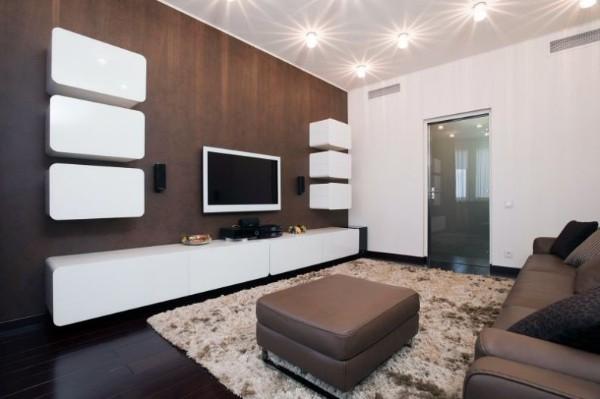 гостиная с акцентной коричневой стеной где мало солнечного света