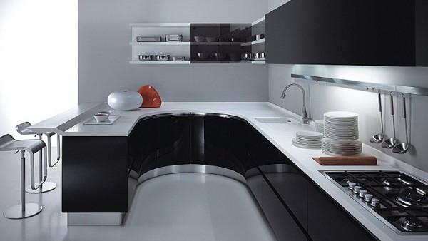 чёрно-белая кухня цвет фасада