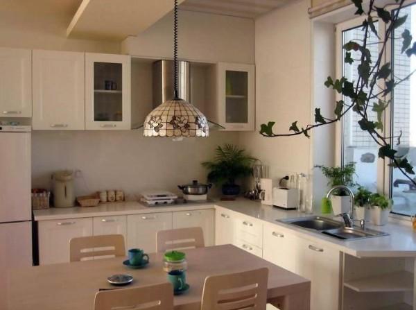 Угловые кухни для маленькой кухни, фото 4