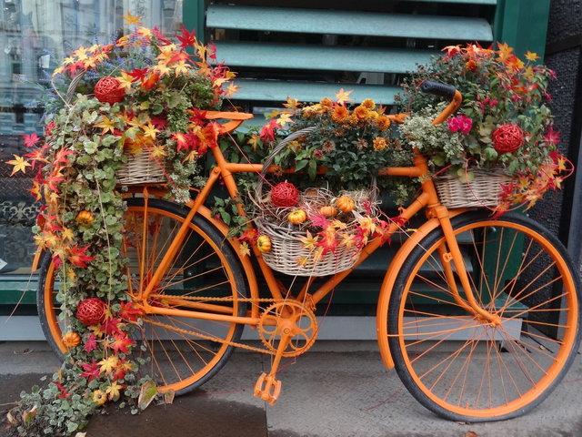 осенняя композиция велосипед