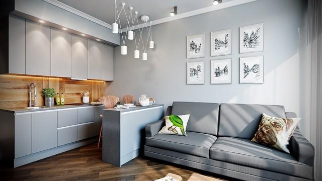 интерьер кухни студии с диваном