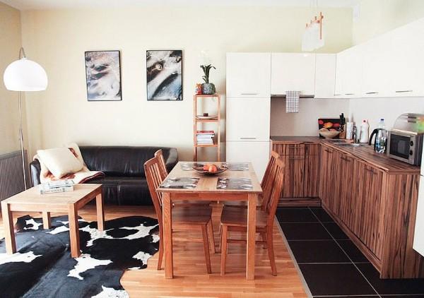 кухня студия с гостиной интерьер без излишеств