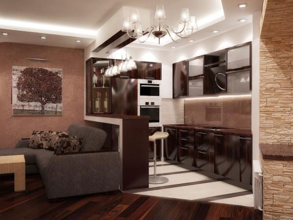 маленькая кухня студия с гостиной