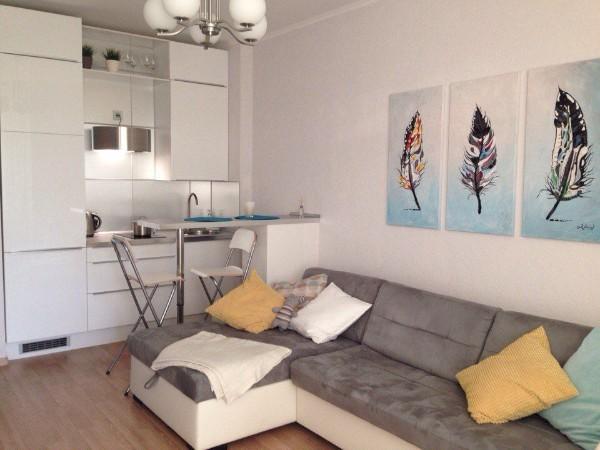 небольшая светлая кухня студия с гостиной