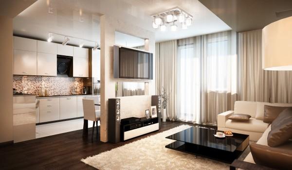 интерьер гостиной студии совмещённой с кухней