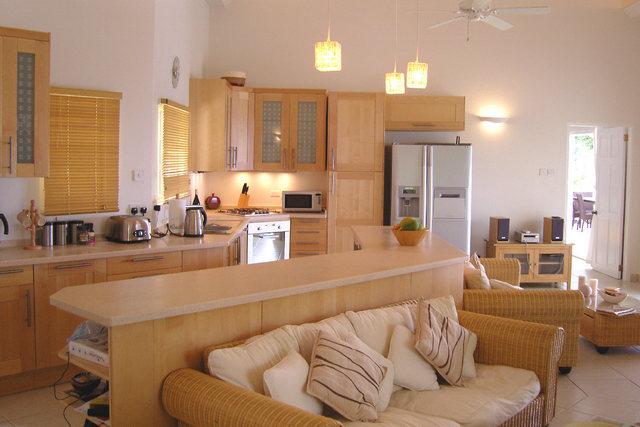 кухни студии в частном доме фото