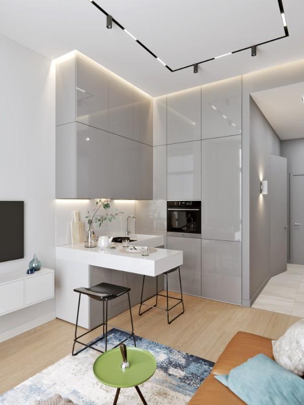 кухня студия с гостиной фото