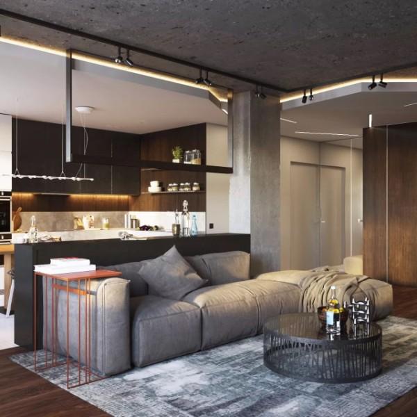 кухня студия с гостиной лофтовый дизайн интерьера