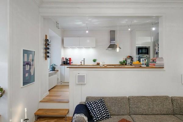 кухня студия с гостиной подиум