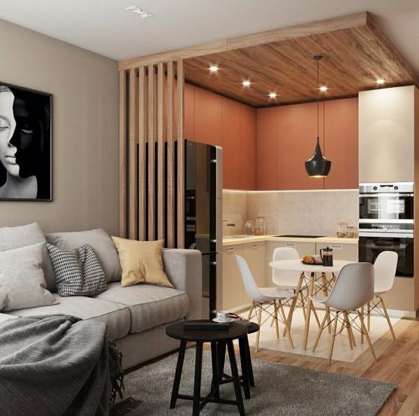 стильная кухня студия с гостиной