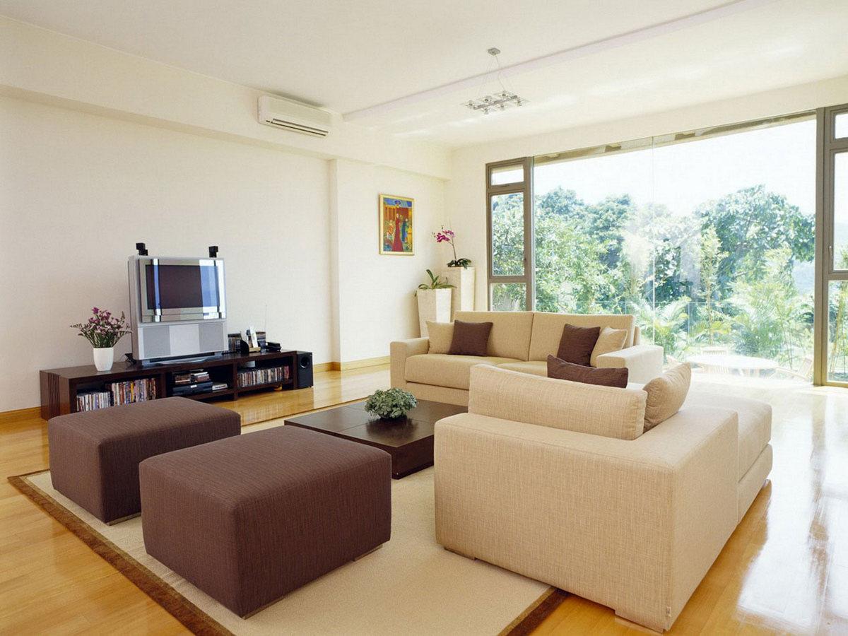 дизайн залы в частном доме