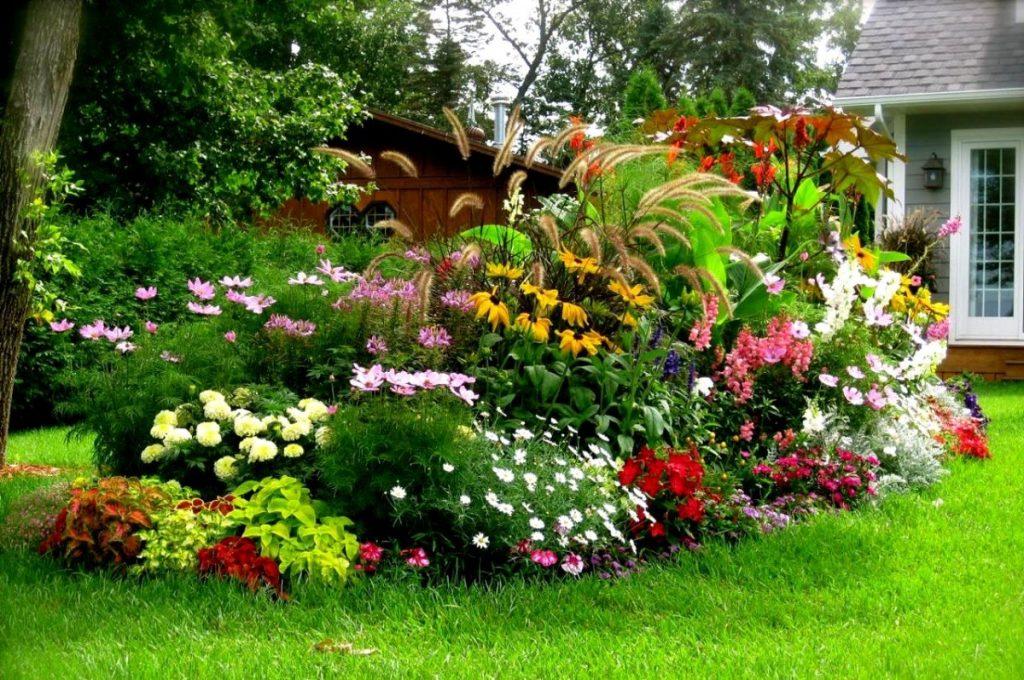 дизайн клумбы цветы разных оттенков и размеров