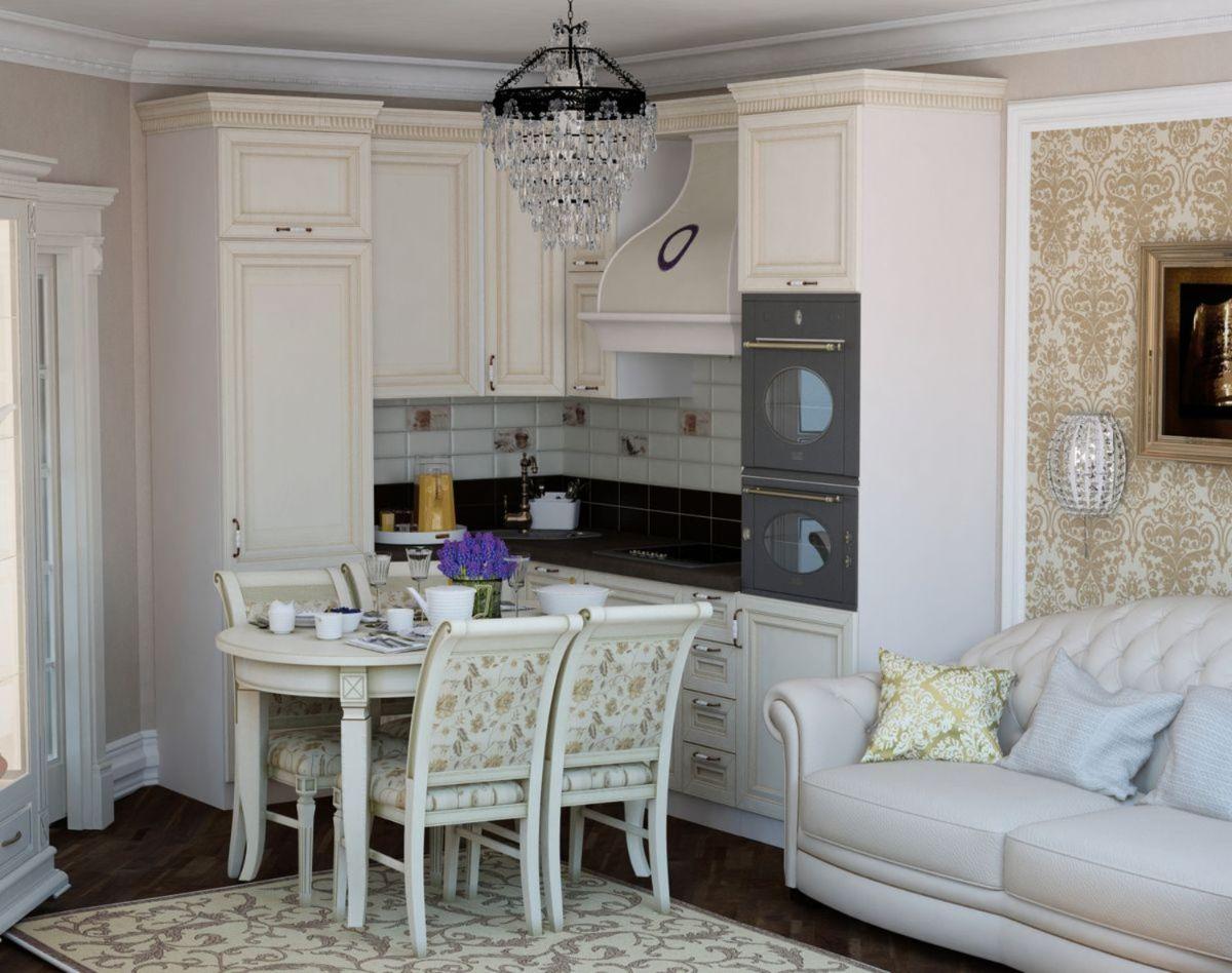проект небольшой кухни гостиной дизайн классика