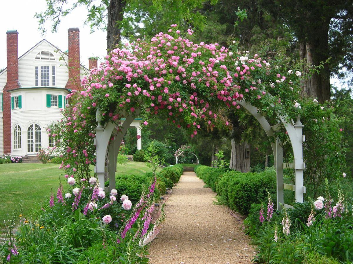 дизайн садового участка с аркой из роз