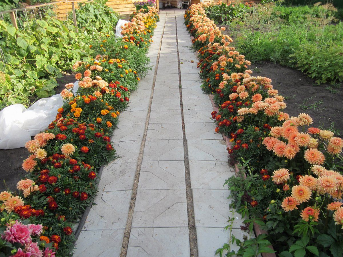 дизайн садового участка с дорожкой