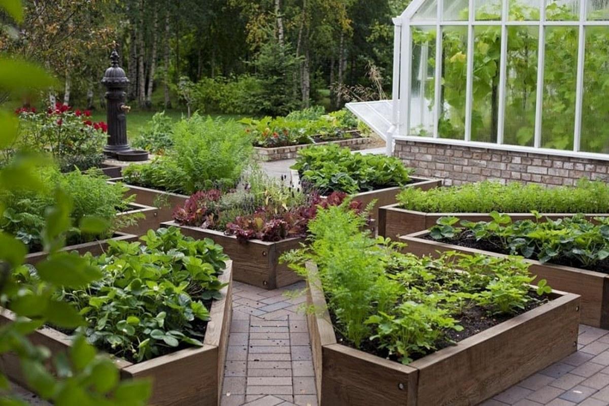 ландшафтный дизайн садового участка теплица