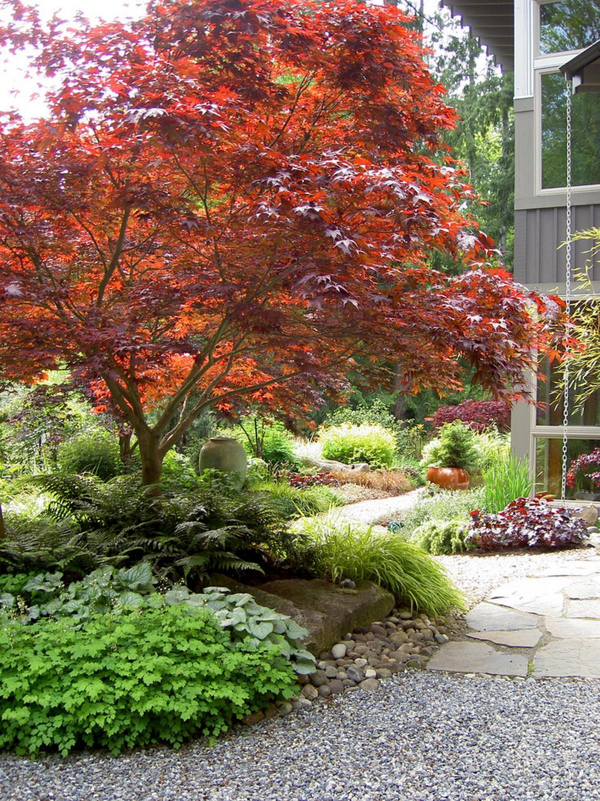 ландшафтный дизайн садового участка 10 соток клён