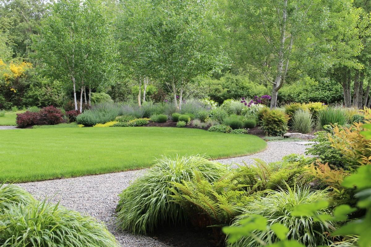 ландшафтный дизайн садового участка 10 соток вариант озеленение