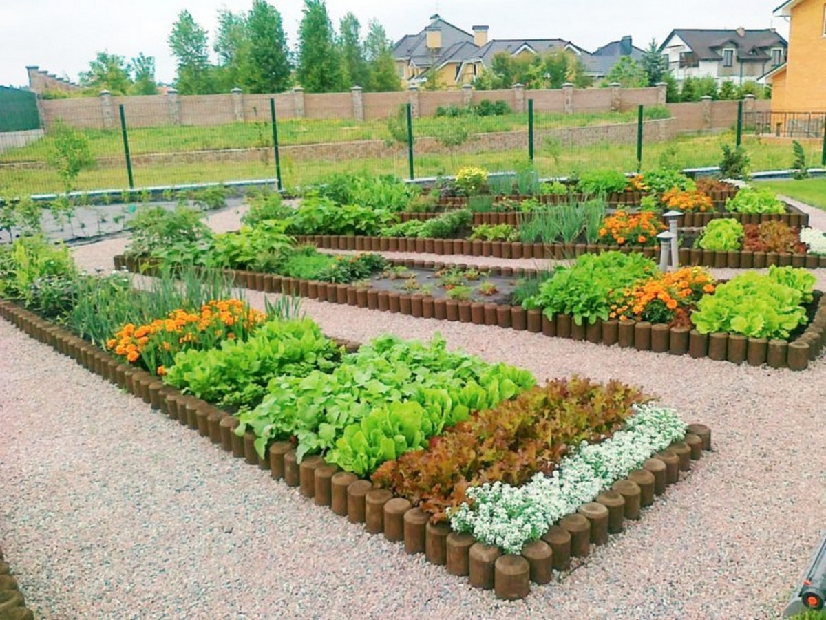 ландшафтный дизайн садового участка красивый огород