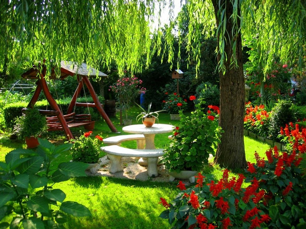 ландшафтный дизайн садового участка своими руками ивы